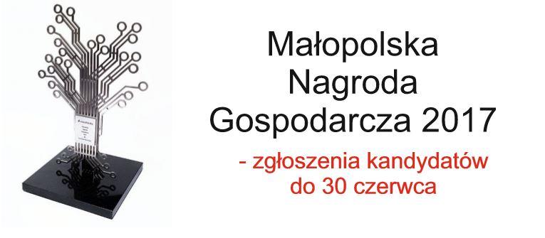 Do 30 czerwca można zgłaszać kandydatów do  Małopolskiej Nagrody Gospodarczej 2017 - zdjęcie główne