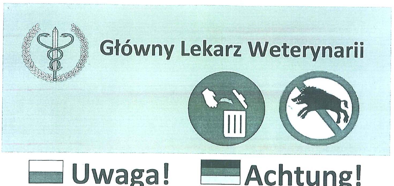 Informacja Powiatowego Lekarza Weterynarii dotycząca  afrykańskiego pomoru świń w Polsce - zdjęcie główne