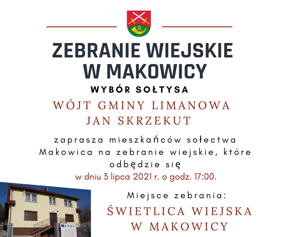 3 lipca 2021 r- zebranie wiejskie w Makowicy - zdjęcie główne