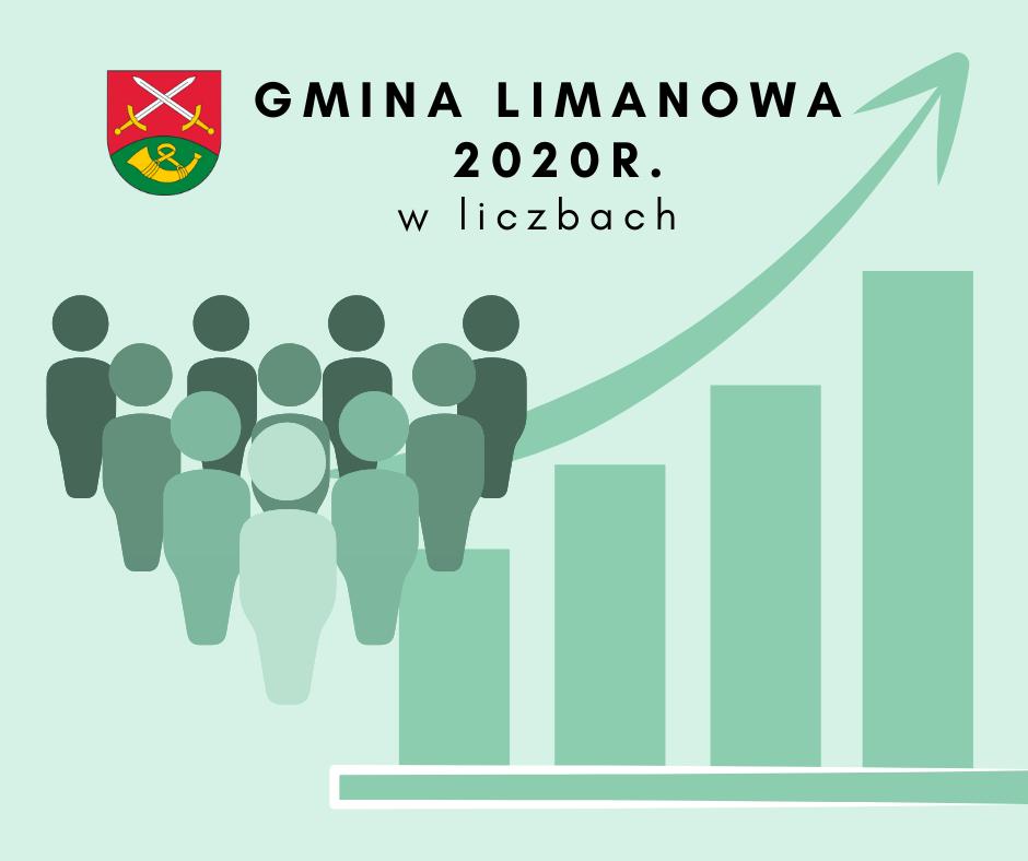Gmina Limanowa w statystykach za 2020 r. - zdjęcie główne