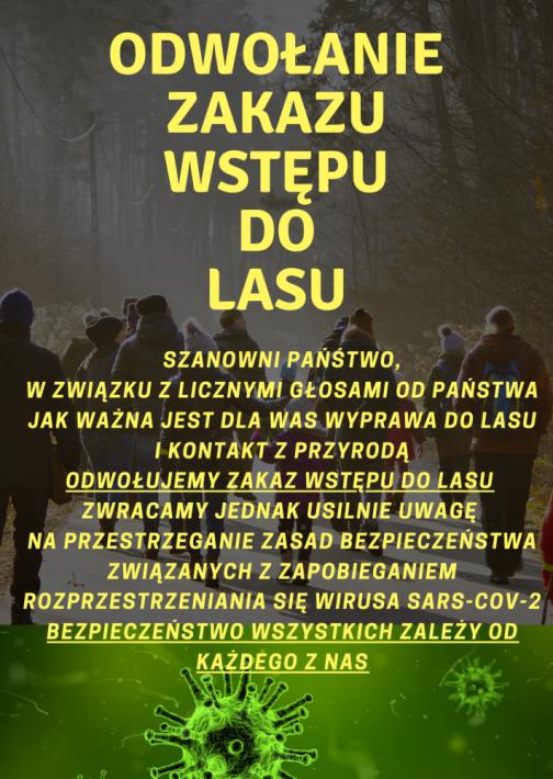 Odwołanie zakazu wstępu do lasów - zdjęcie główne